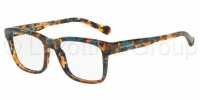 Arnette  7101   1184 collection