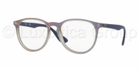 RAY-BAN  7046 5486 collection